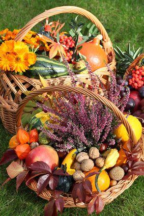 Guide Des Restaurants Gastronomiques Et Hotels Tables Auberges Fruits Et Legumes Bouquet De Fruits Fruits