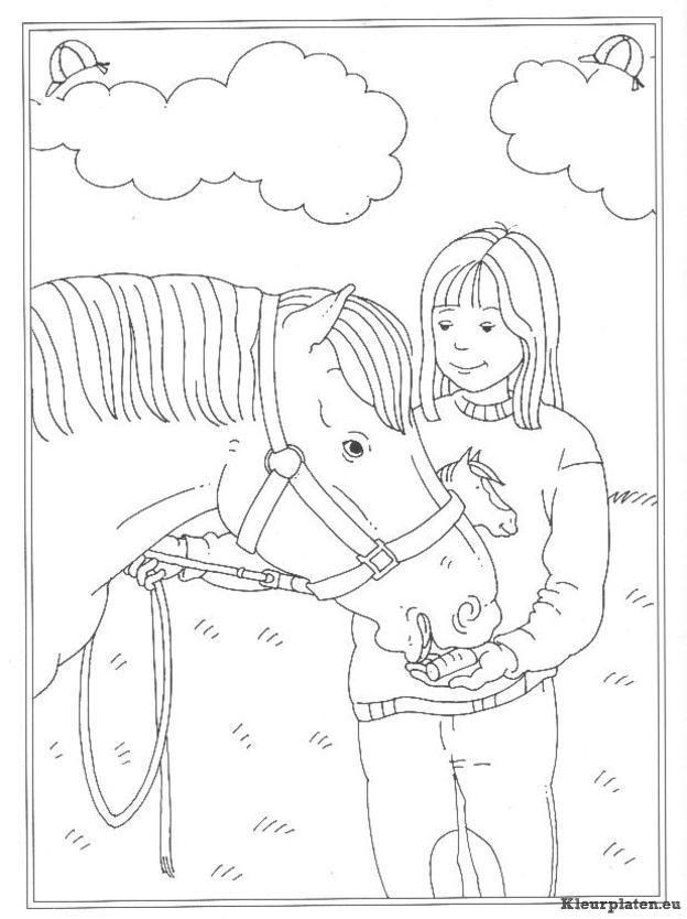 kleurplaten van paarden die springen | kleurplaten van dieren