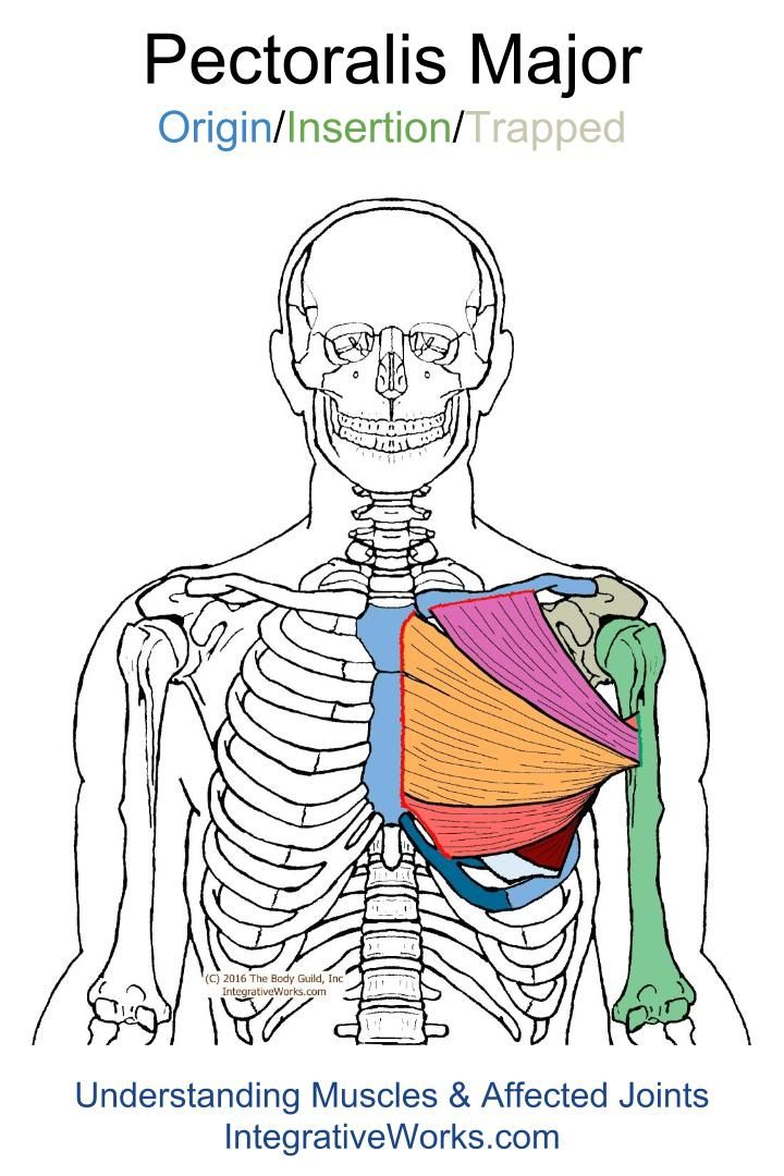 Trigger Points – Pain in front of shoulder when reaching out to the side