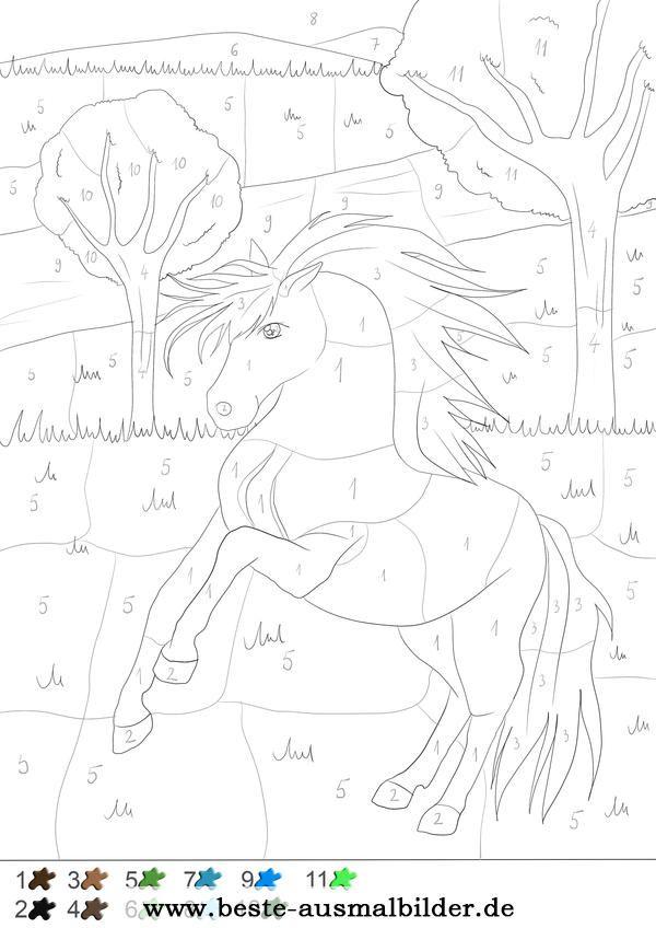 Pferd - Malen nach Zahlen | Malen nach zahlen, Malen nach ...