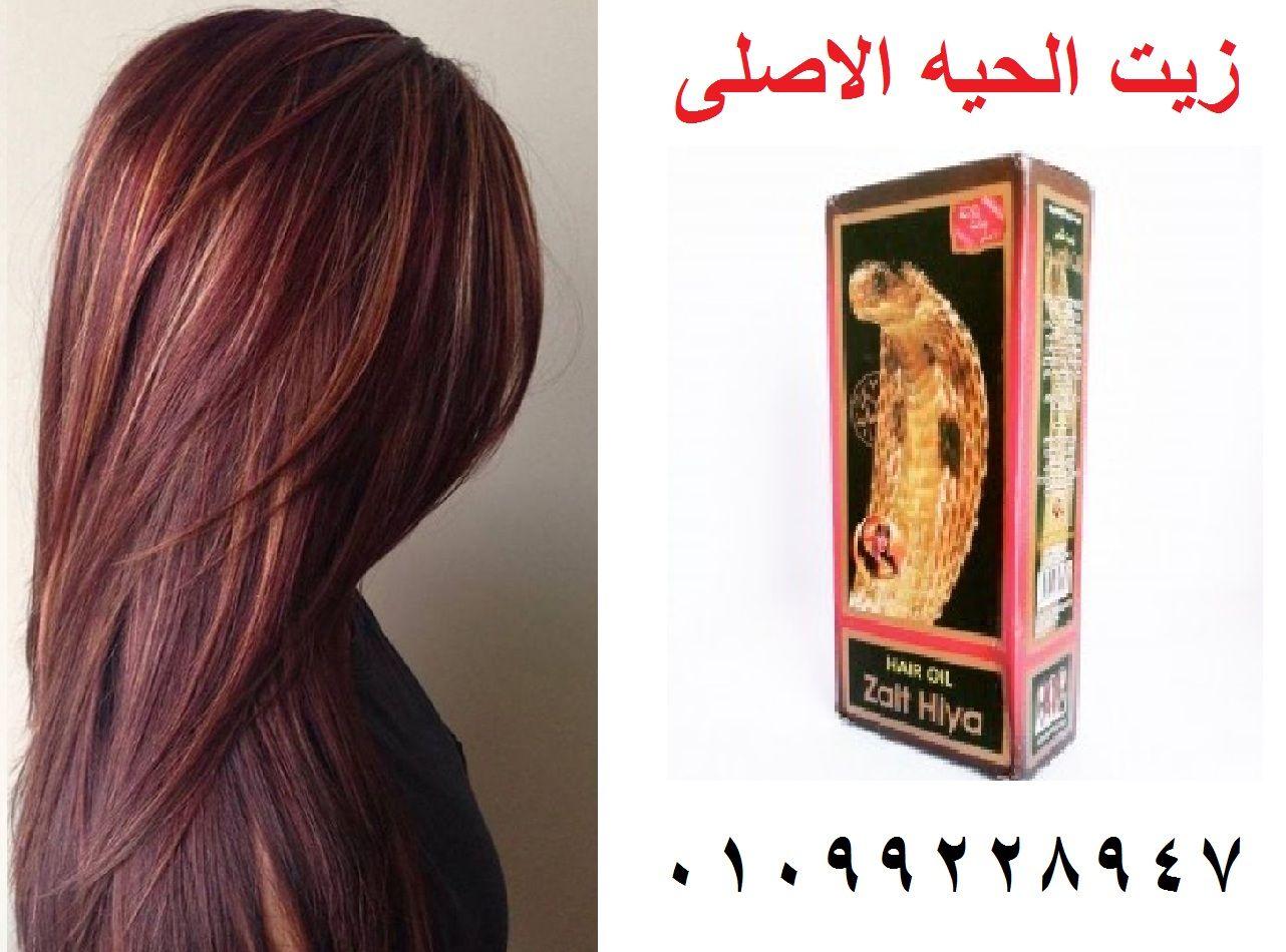 زيت الحية الأصلي 100 ومضمون يمنع تساقط الشعر Long Hair Styles Hair Hair Styles