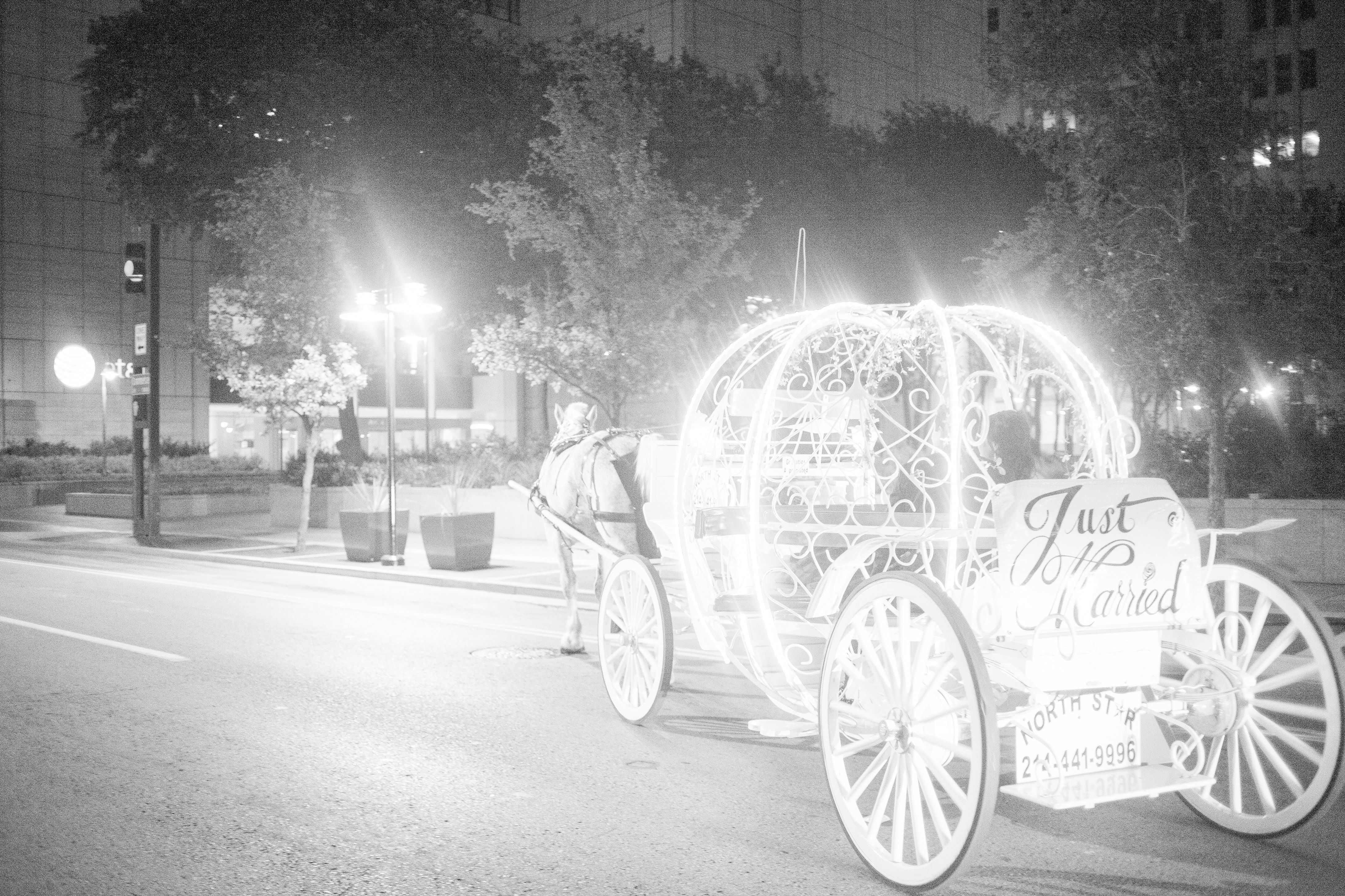 Pretty in Pink Dallas Wedding | Garden gate, Wedding planners and ...