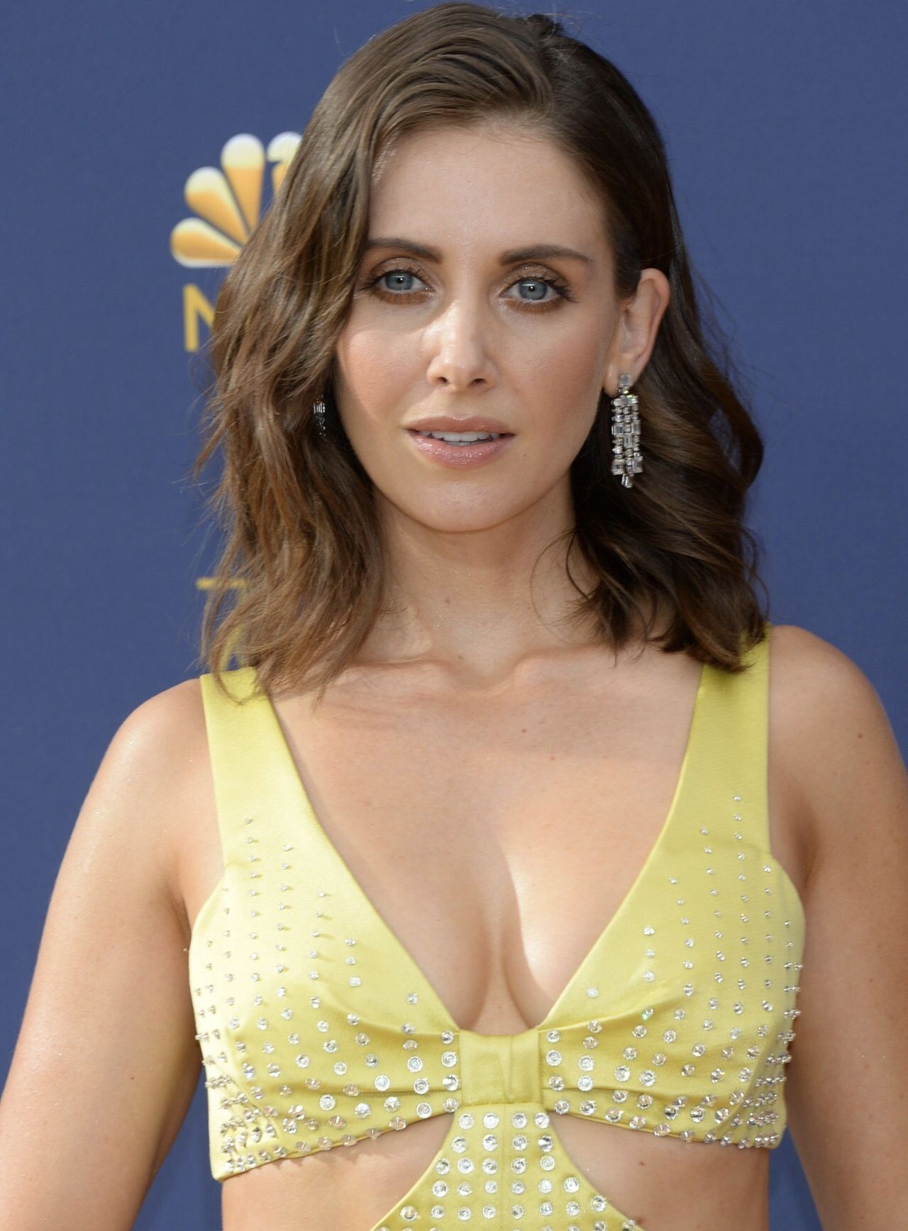 Alison Brie Sex Scandal alison brie | alison brie, brie, beautiful actresses