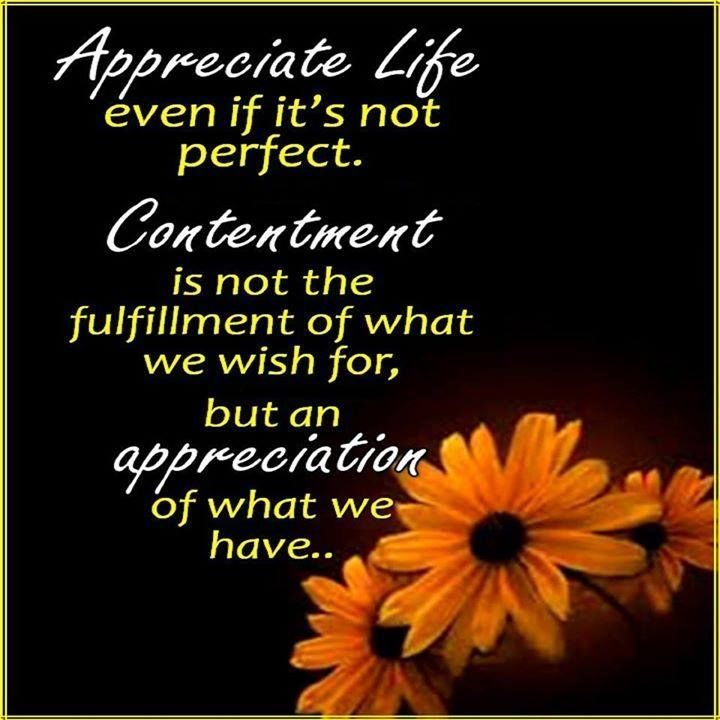 Appreciate life even if it's not perfect quotes