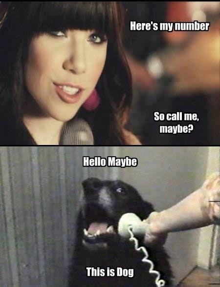 Dubstep Carly Rae Jepsen Call Me Maybe Eu4ya Mashup Call Me Maybe Maybe Meme Funny Pictures