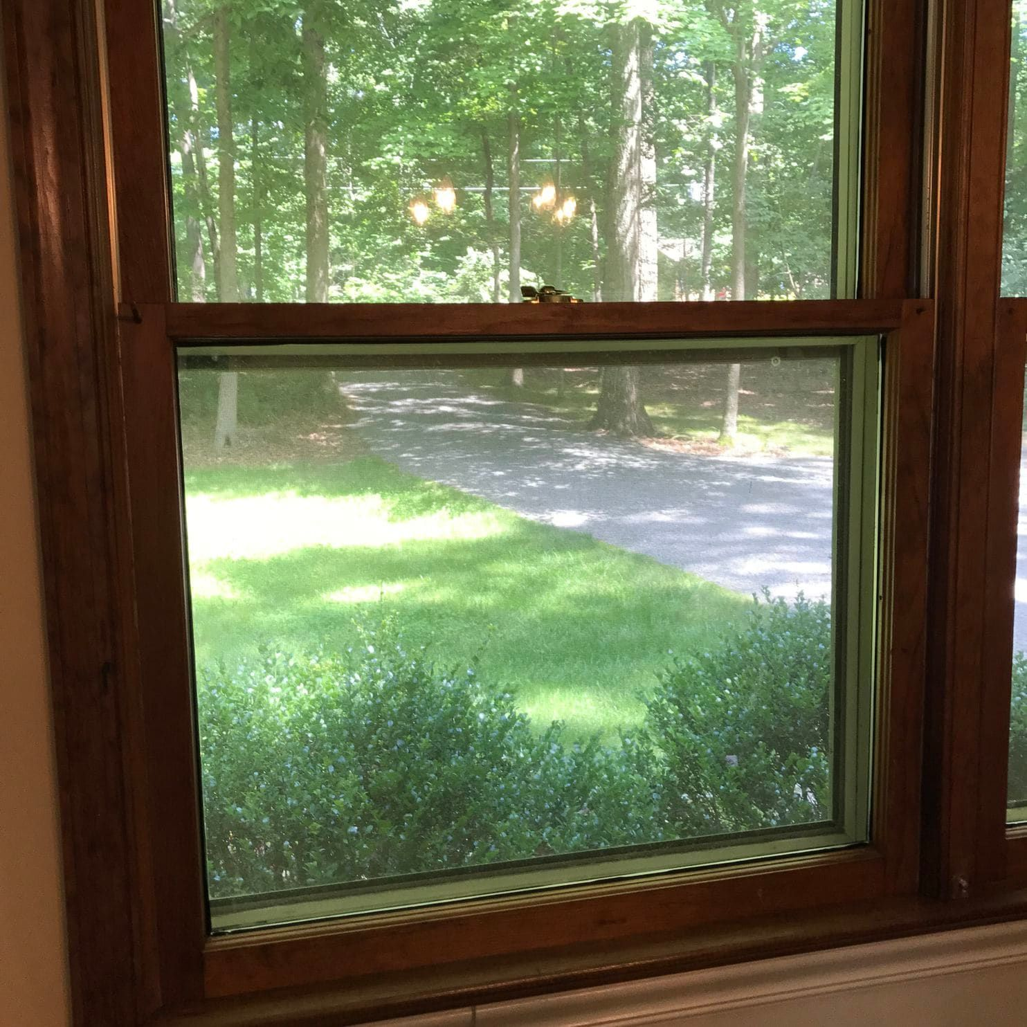 How To Repair Old Wooden Double Hung Windows Double Hung Windows Wooden Blinds Double Hung