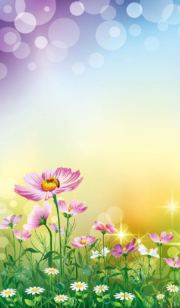 Fantasy Flღwers Frame Border Design Beautiful Nature Wallpaper Flower Backgrounds