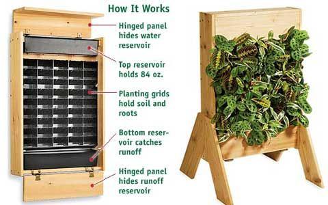 Indoor Living Wall Planter - http://freshome.com/2008/01