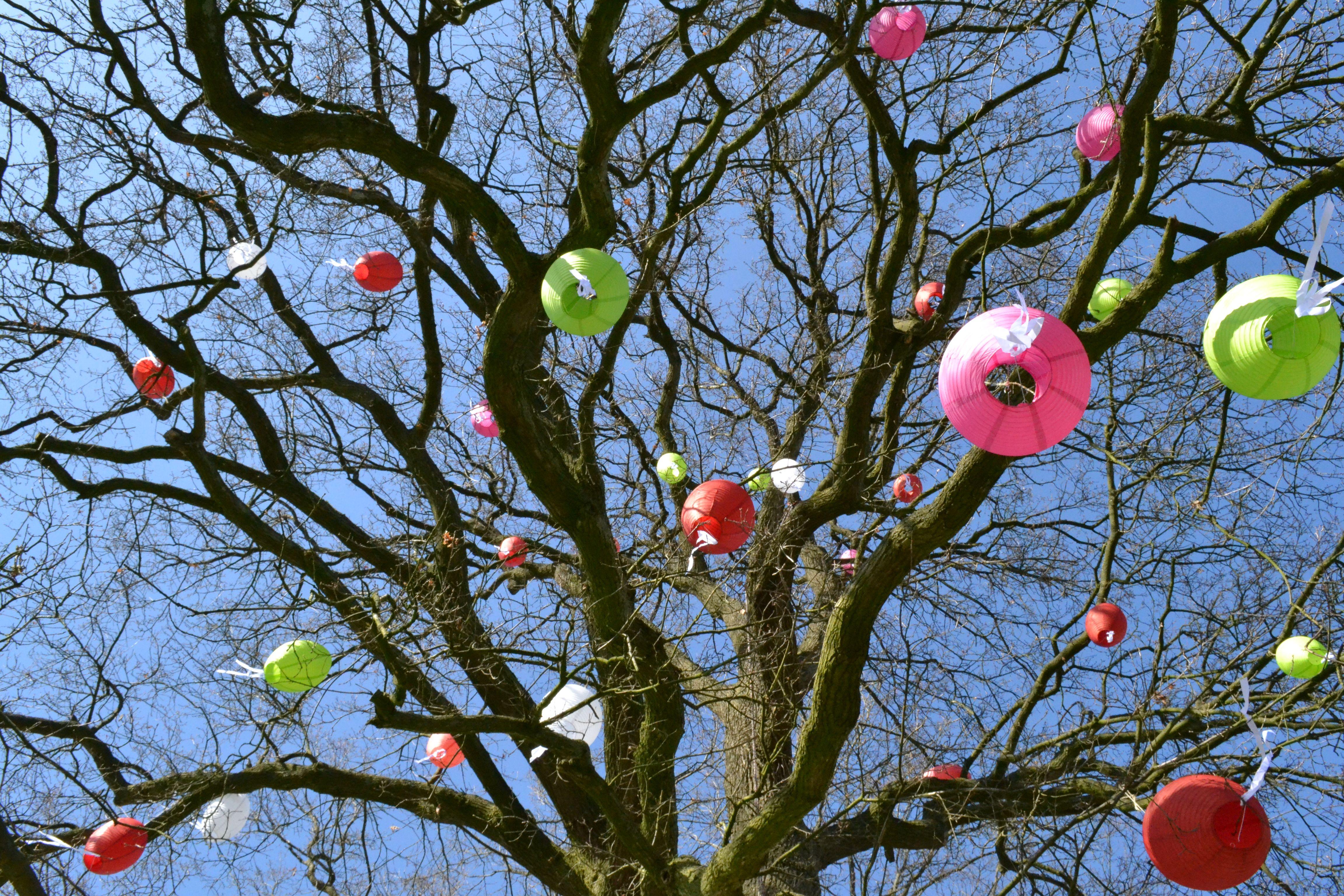 Tree Decoration Vrolijke Lampionnen Boom Decoratie Decoratie Knutselen Boom