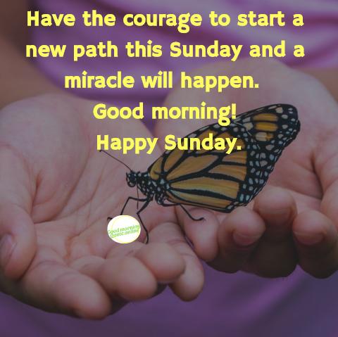 Happy Sunday Quotes Happy Sunday Quotes Sunday Messages Sunday
