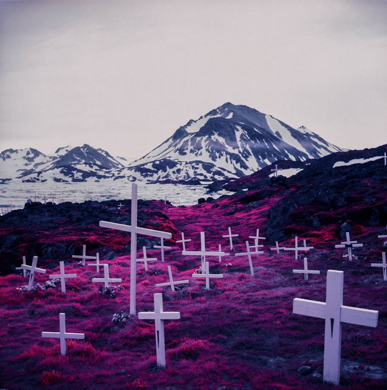 Arctic Landscape Transformed into Infrared Paradise by Daniel Zvereff   /   http://photovide.com/?p=174088