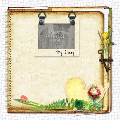 My Diary-covers Template AneczkaW Designs @MyMemories - diary paper template