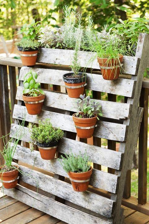 10+ maneras de maximizar un jardín pequeño