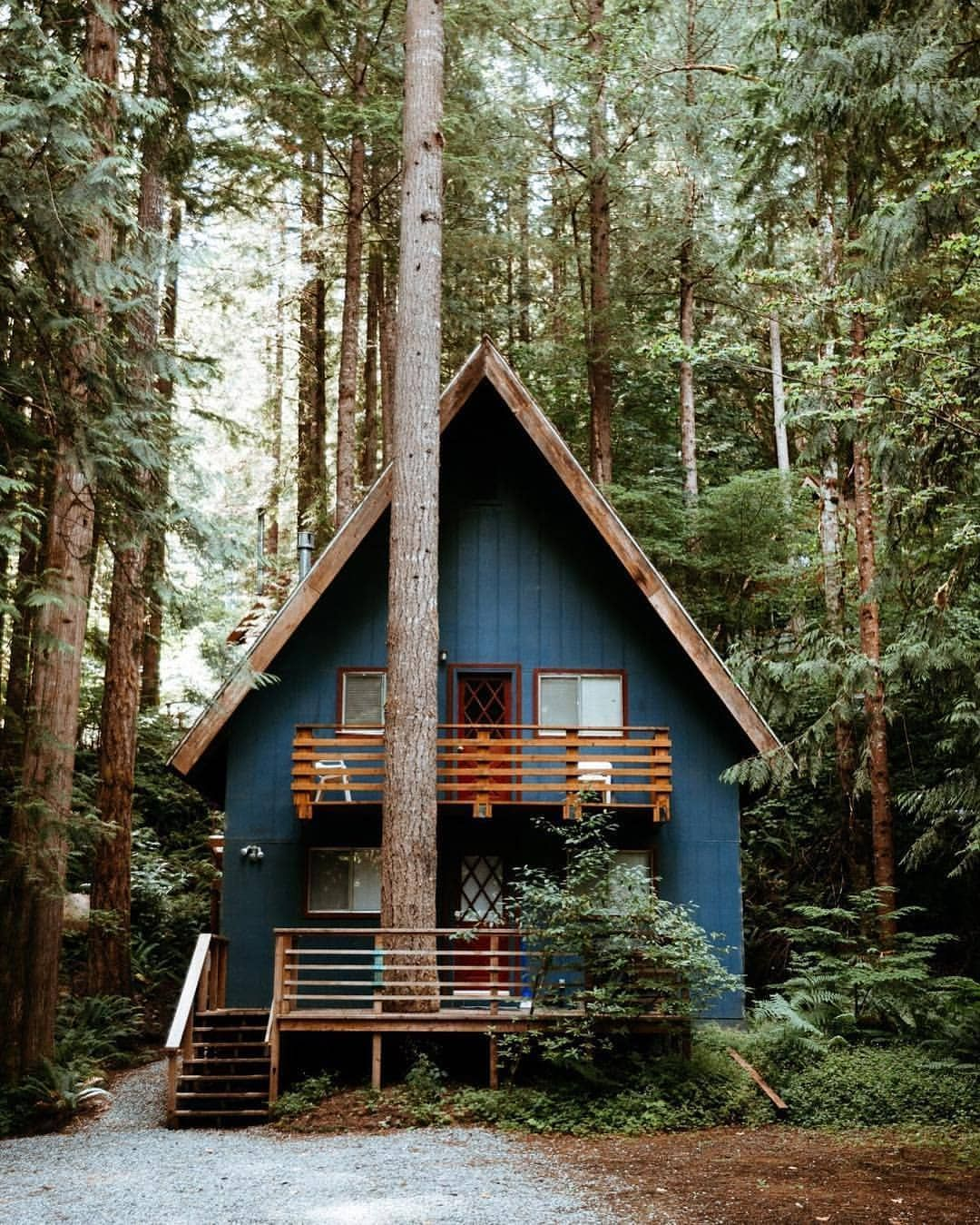 The ultimate cabin in the woods somewhere far far away