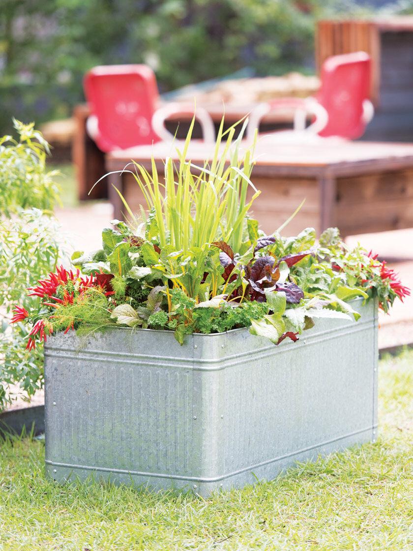 Vintage WashtubStyle Metal Raised Garden Bed Gardener's