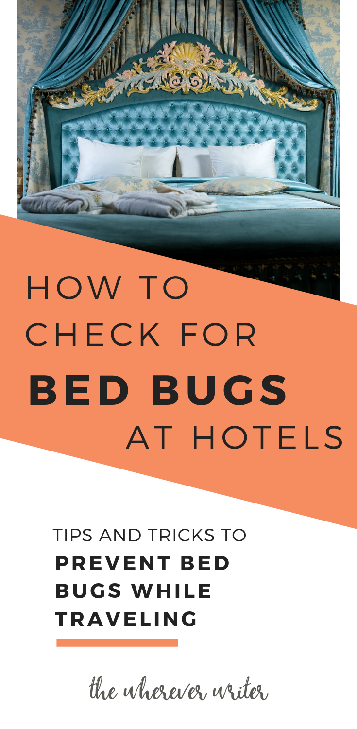 How To Prevent Bed Bugs While Traveling The Ultimate Guide