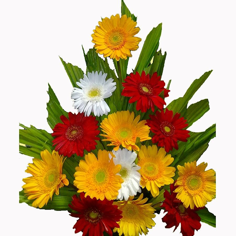 flower delivery in bangalore #online flower in bangalore #send ...