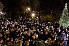 Carl Schurz Park Tree Lighting Ceremony   Date: December 6, 2015, 5
