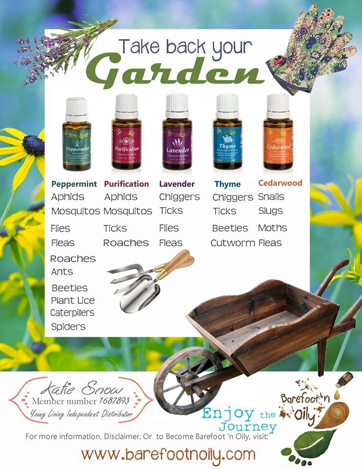 sydney banks the enlightened gardener pdf
