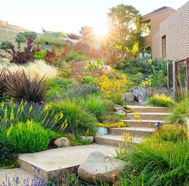 20 Modern Frontyard Garden Design Ideas Eweddingmag Com In 2020 Small Front Yard Landscaping Garden Design Modern Landscaping