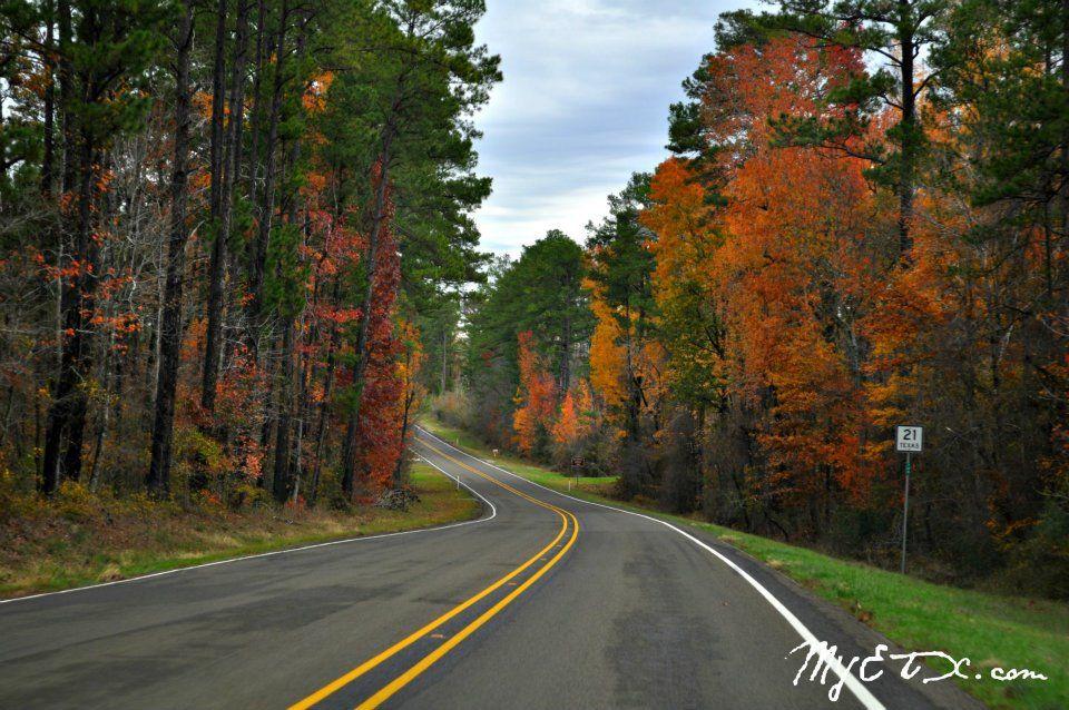 East Texas Fall Foliage Driving Routes Fall foliage