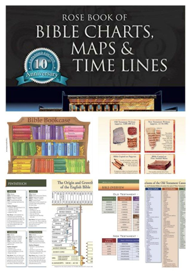 Free Printable Bible Timeline Cards - BibleJournalLove.com