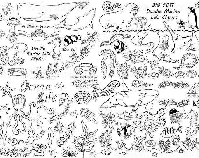 Big Set Of Doodle Hearts Clipart Heart Clip Art Digital Etsy Marine Life Clip Art How To Draw Hands
