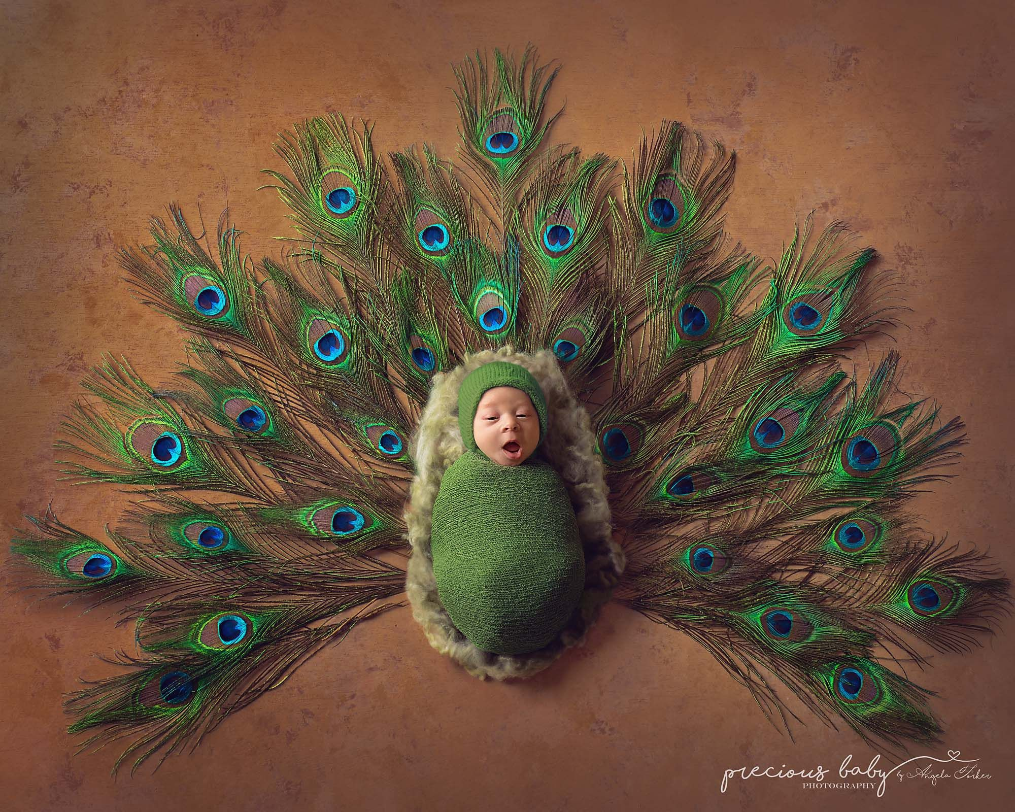 554a8558d619 Adorable squawking peacock baby boy. feathers newborn creative ...