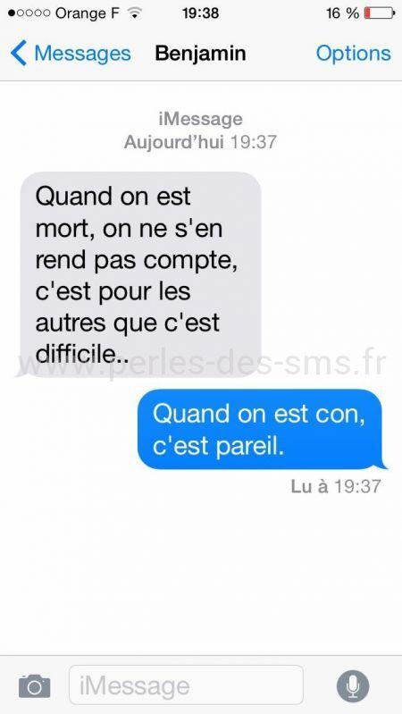 Populaire théorie mort con perles-des-sms | Humour | Pinterest | Sms  BI14