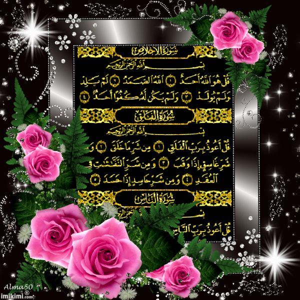 seal harbor muslim single women Singlemuslimcom the world's leading islamic muslim singles, marriage and shaadi introduction service over 2 million members online register for free.