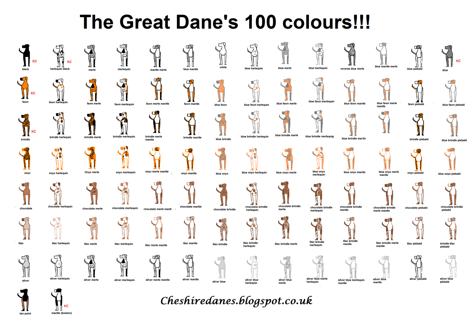 Great danesssss projects to try pinterest cuddling and dog explore great dane colors color charts and more nvjuhfo Choice Image