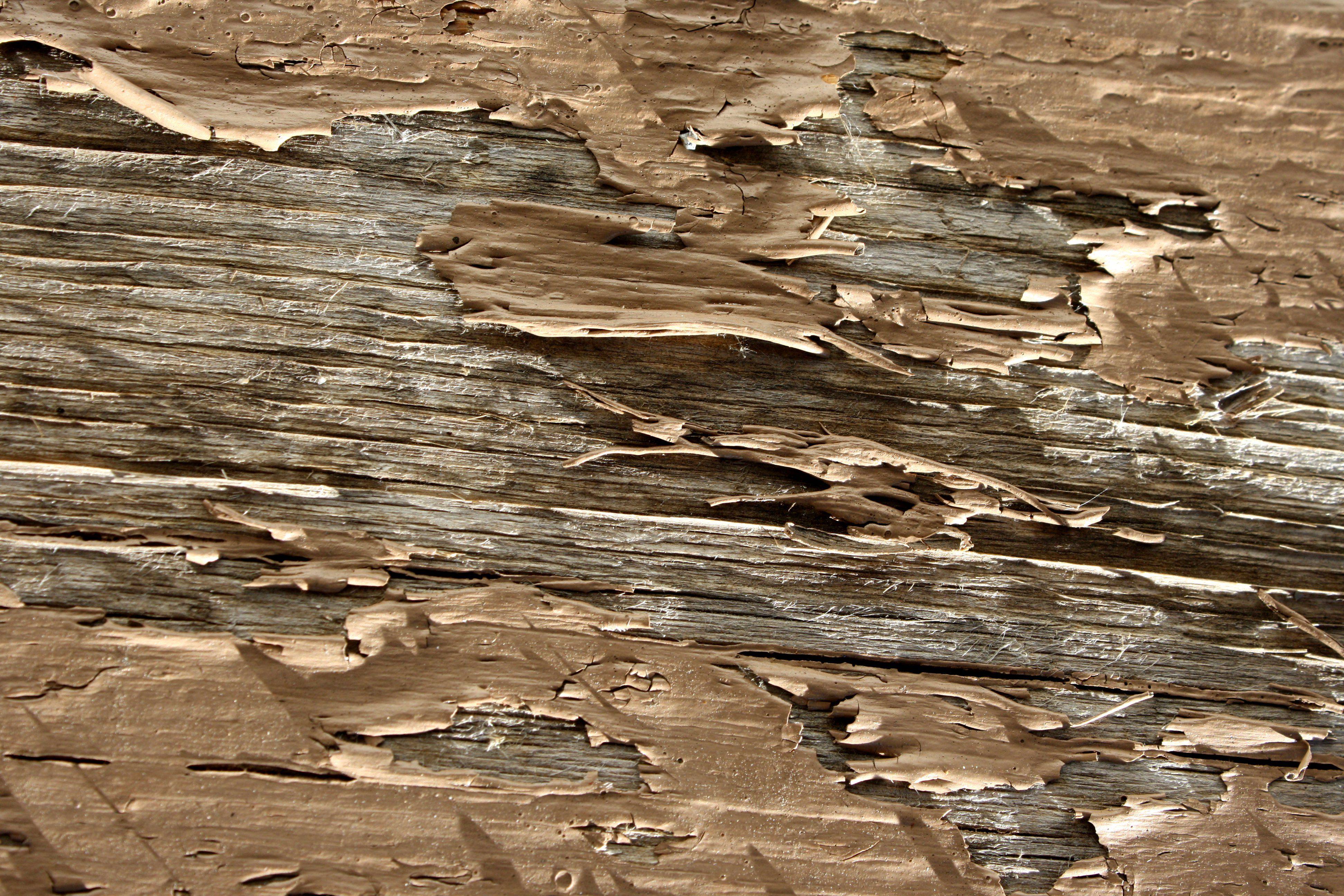 Peeling Brown Paint Texture Picture | Free Photograph | Photos ...
