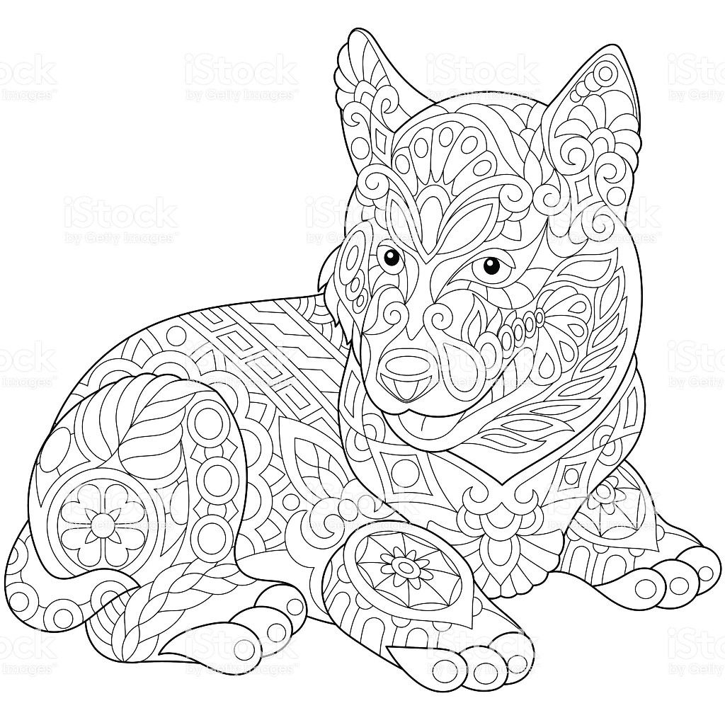 Pin By Kate Linahan On 0 Animals Dogs Dog Coloring Page Animal Coloring Pages Coloring Pages [ 1024 x 1024 Pixel ]
