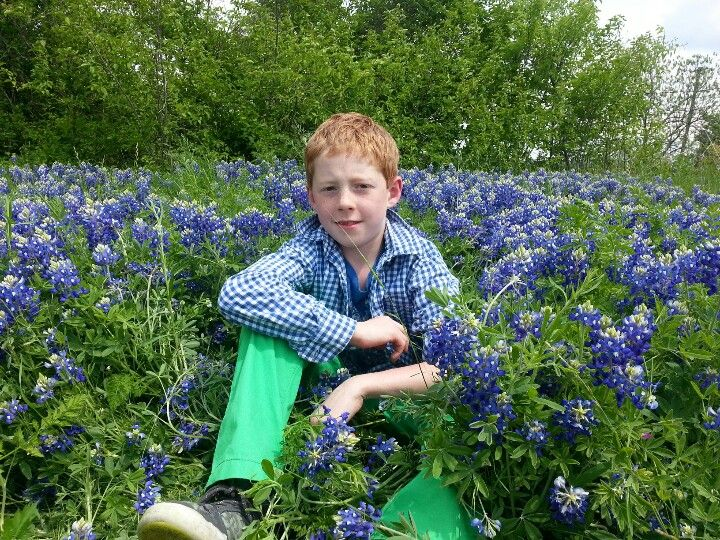 Kenseth, in the Bluebonnets, 2014.