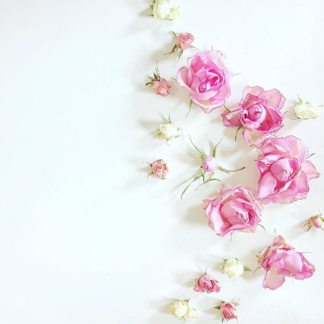See This Instagram Photo By Rosie Pic 03 163 Likes Floral Art Flower Backgrounds Girly Pictures
