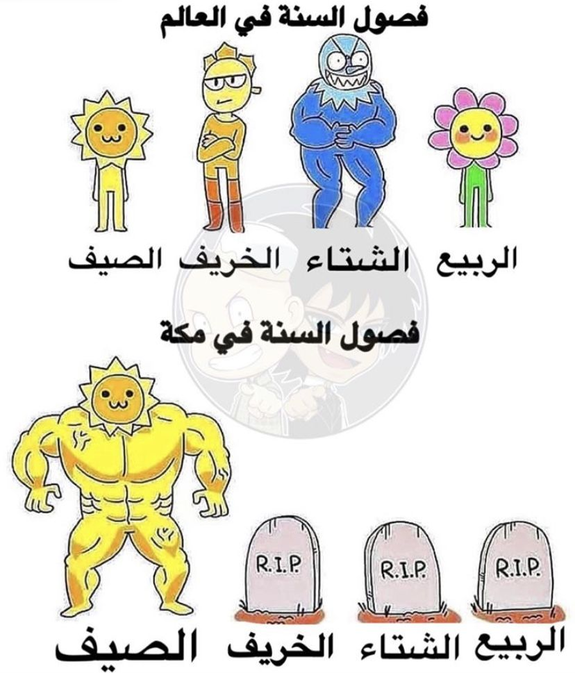 Pin By A On افتارات Really Funny Memes Funny Arabic Quotes Gintama Funny