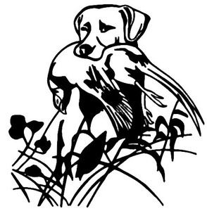 Pheasant Bird And Dog Decal WD Bird Hunting Window Sticker - Sporting dog decals