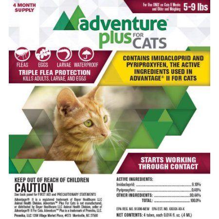 Adventure Plus Flea And Tick Prevention For Cats 5 9 Lbs 4 Months Protection Walmart Com Fleas Flea Prevention For Cats Cats