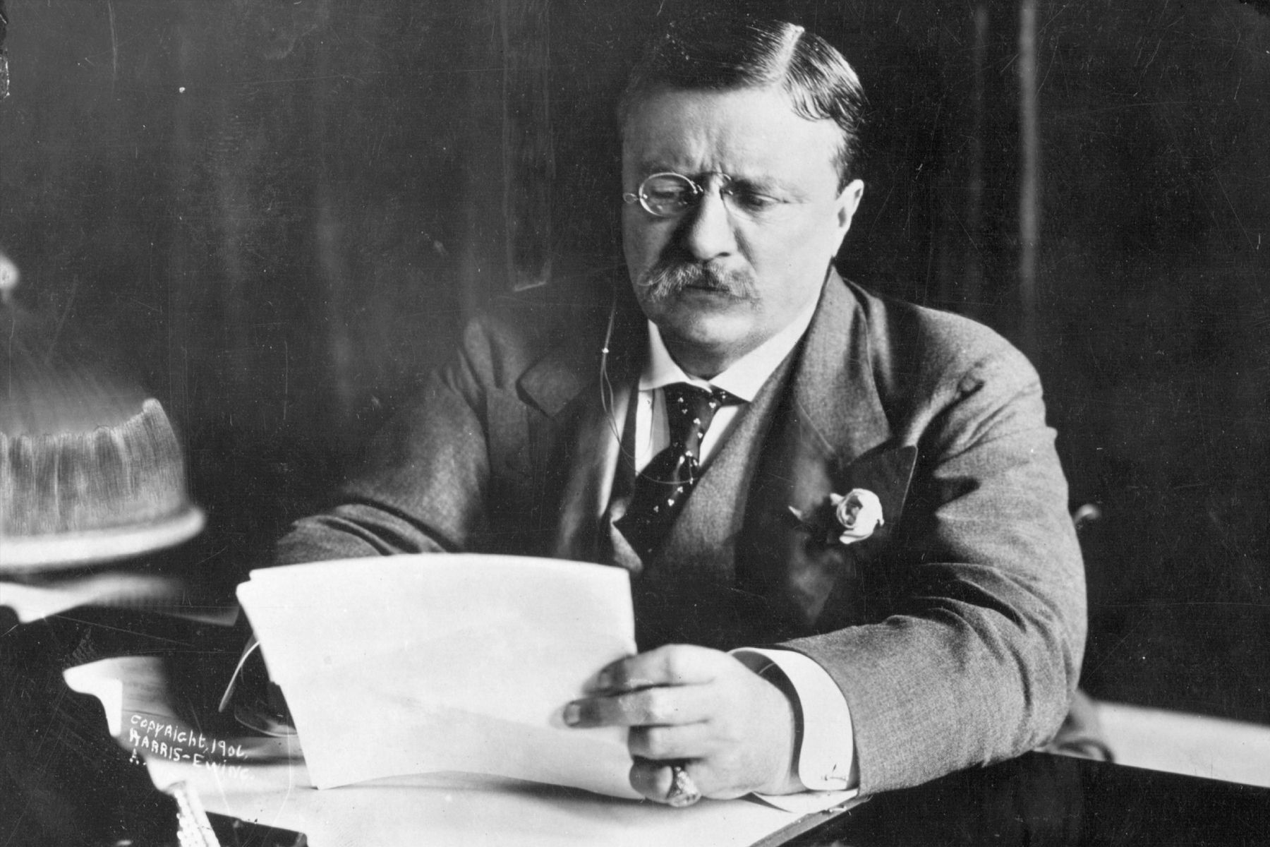 Theodore Roosevelt Quotes The Theodore Roosevelt Quiz  Theodore Roosevelt And Roosevelt