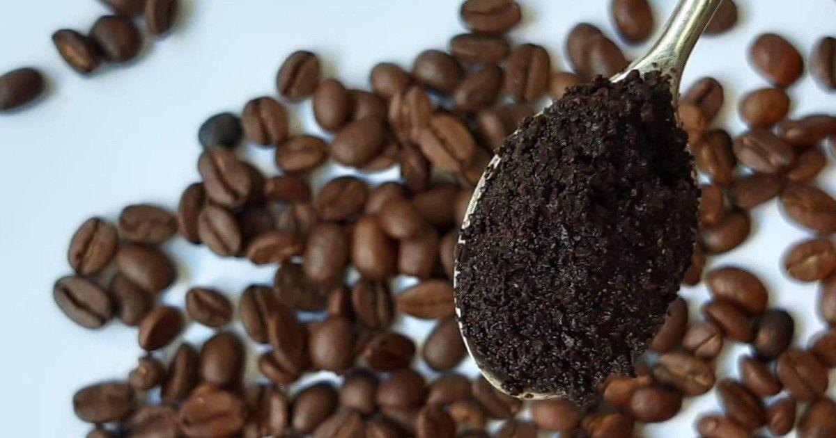 No La Deseches Descubre Los Sorprendentes Usos De La Borra De Café En El Hogar Mui Vida Sana Cafe Como Limpiar El Microondas Desechos