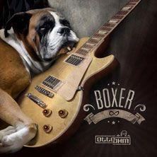 Dopo l'annuncio dell'imminente pubblicazione dell'ultimo album di indediti, Boxer, gli Otto Ohm tornano a suonare dal vivo! Scopri tutti i dettagli!