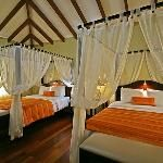 23f1e141567cfedcd88d37dfd7552d1b - Tortuga Lodge And Gardens Costa Rica