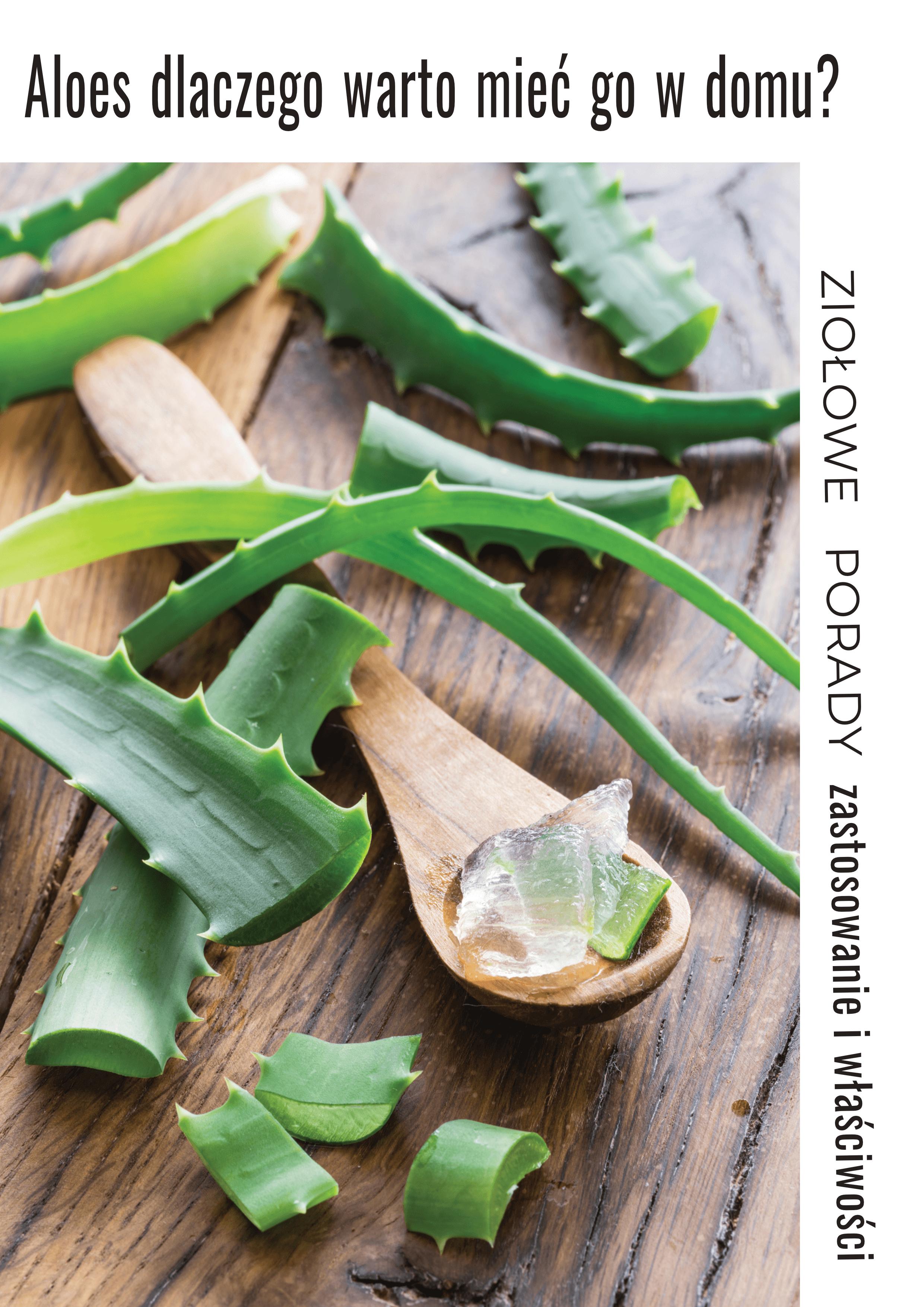 Aloes Jeden Z Trojcy Moje Naturalnej Domowej Apteczki Healthy Beauty Dieta Detox Herbs