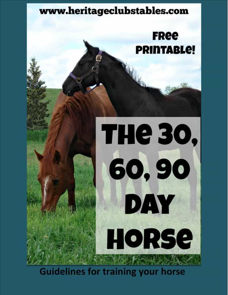 Free Resource Page For Horse Owners Horses Horse Training Ground Work Horse Training