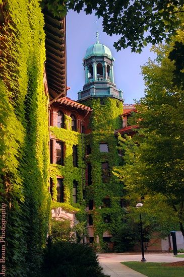 University Of Michigan West Hall Ann Arbor Admission Essays Undergraduate Essay