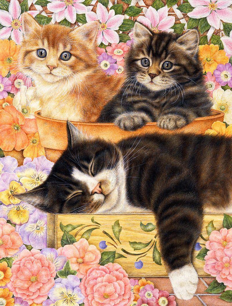 Конструирование, огромные открытки с котами