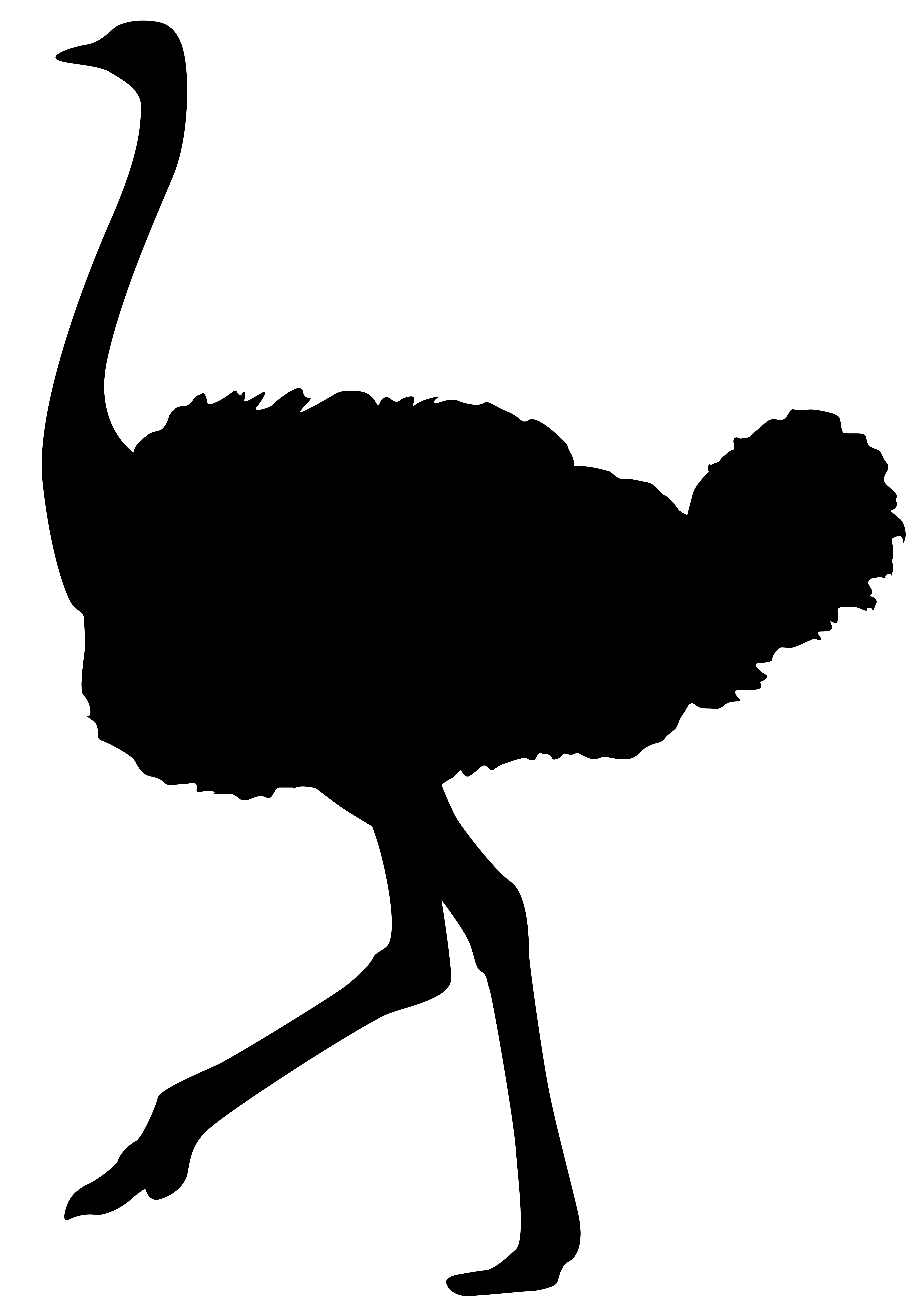 Ostrich Silhouette PNG Transparent Clip Art Image