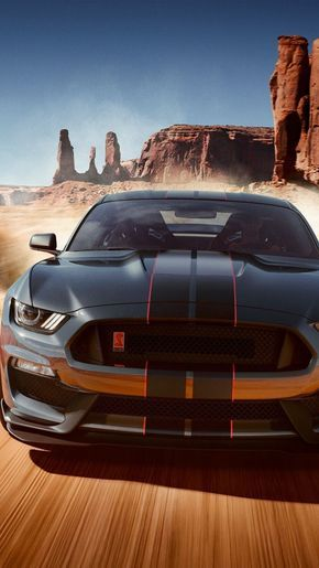 2019 Ford Mustang Shelby GT350, 750×1334 wallpaper