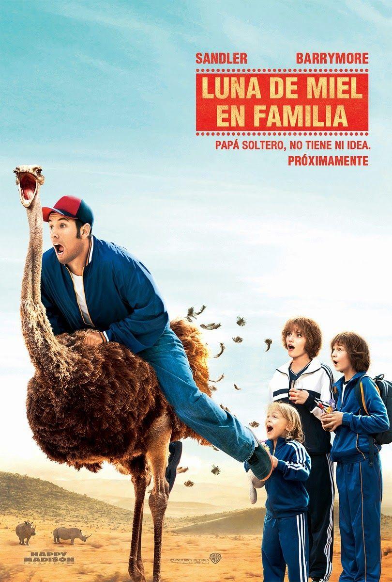 Luna De Miel En Familia Locosporelcine Empeliculados Co Peliculas De Romance Ver Películas Ver Peliculas Gratis