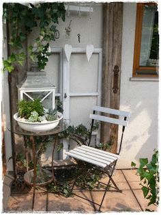 Shabby Landhaus Deko Sukulentová Záhrada Bývanie Und Architektúra